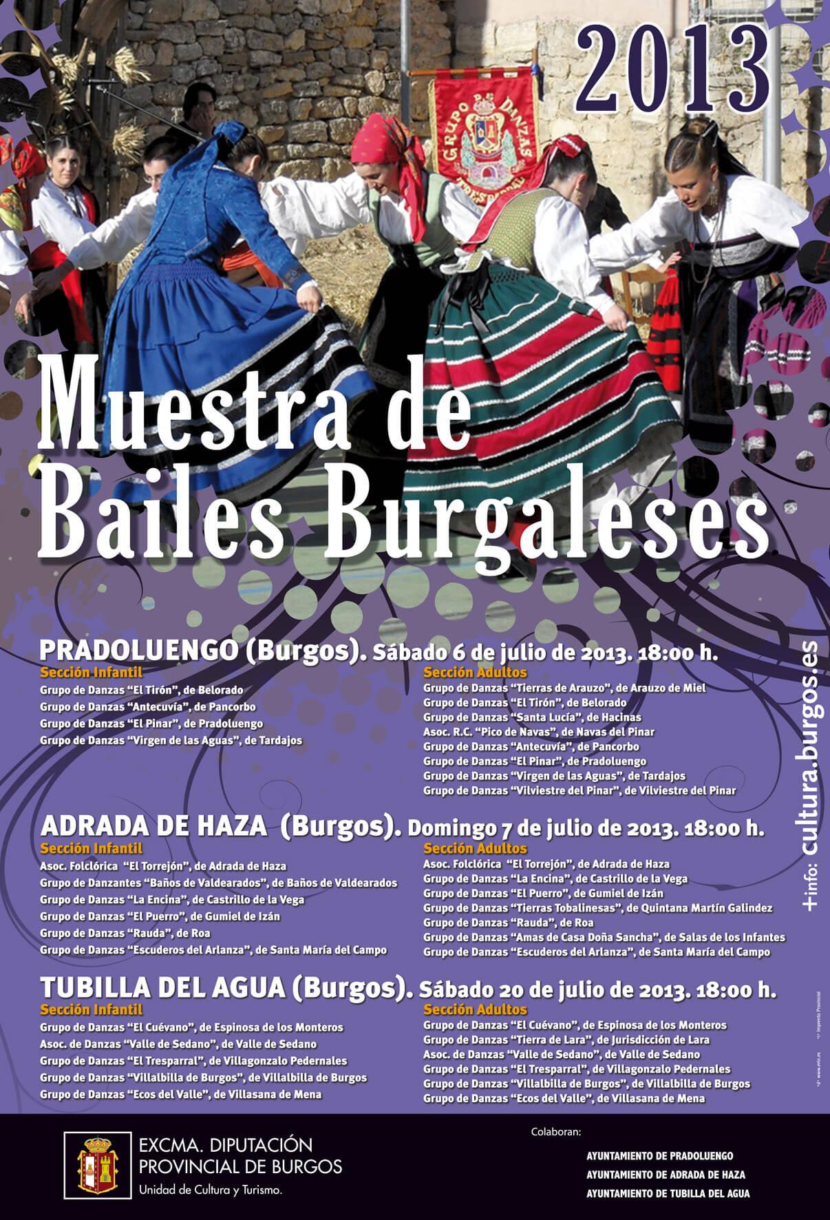 Cartel de la Muestra de Danzas de Pradoluengo 2013